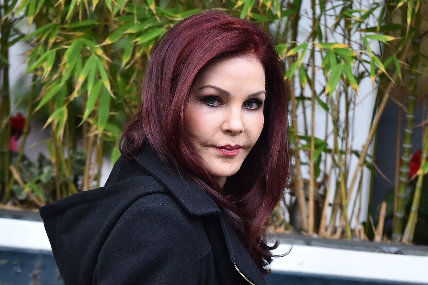 Priscilla Presley On A Liquid Diet Due To Botched Plastic