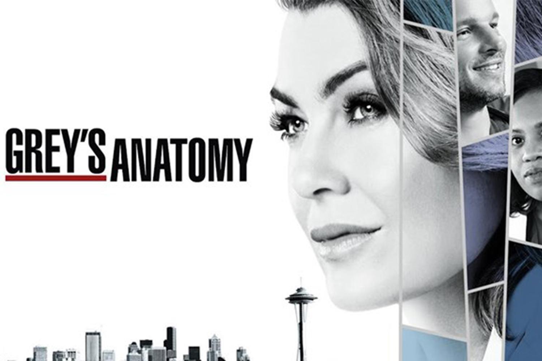 Grey\'s Anatomy season 14 is coming to Channel 7 | New Idea Magazine