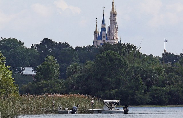 Father Reveals The Time He Saved His Son From Gators At Disney