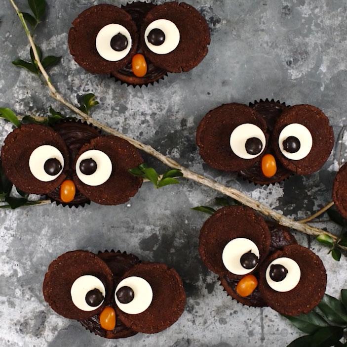 Chocolate Owl Cupcakes Recipe New Idea Magazine
