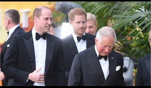 Prince Charles Needs Support From Harry and William Reveals Expert