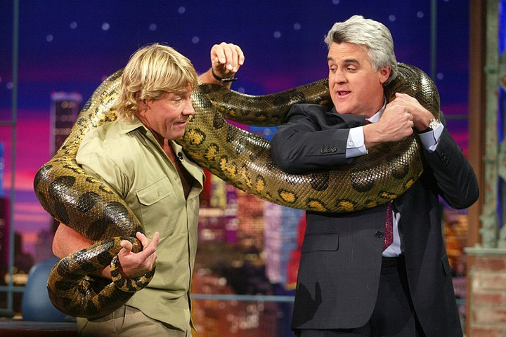 How Did Steve Irwin Die The Truth About The Stingray Attack New Idea Magazine