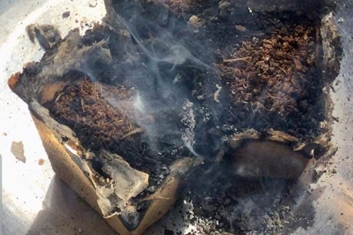 Woolworths Discovery Garden pot 'spontaneously combusts' and 'catches on fire'