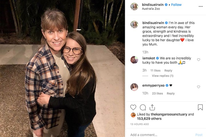 Fans call for Terri Irwin to be the next Bachelorette