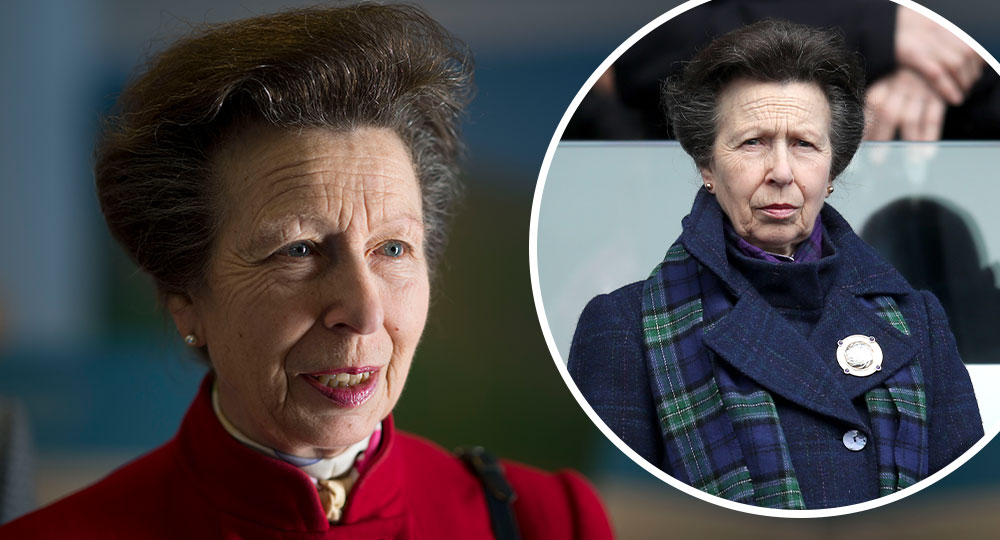 Princess Anne's stalker sentenced after threatening to stab her! - New Idea